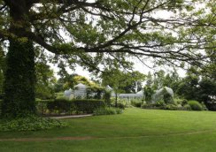 snug-harbor-botanical-garden-greenhouse-guidejpg-79a1a452868ea53a