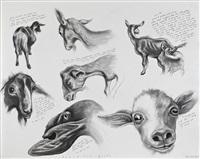 sue-coe-beautiful-goats